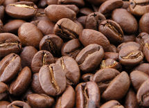 Indonesia Arabica Coffee beans
