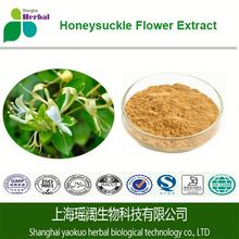 Honeysuckle Flower Extract with 10% 20% 30% Chlorogenic Acid