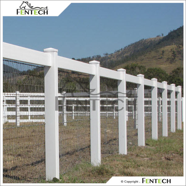 Fentech Wire Mesh Chain Link Fence with PVC Fence Post and Flat Post Cap