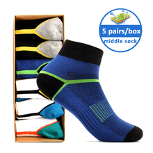 wholesale mens fashion socks 100% cotton soccer sock