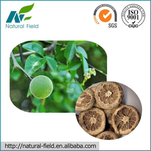 100% Natural Bitter Orange Peel Extract Synephrine 6% - 98% Manufacturer