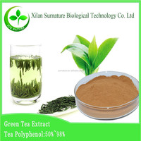 supplying green tea extract, green tea health benefits