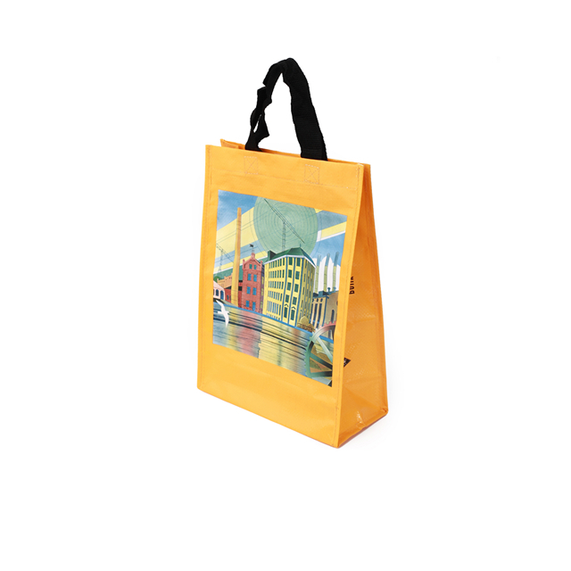 Eco-friendly pp woven reusable grocery shopping bag with <strong>tote</strong>