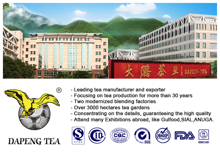 High quality 3505 Gunpowder green tea factory price