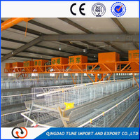 automatic broiler pan feeding system for poultry house