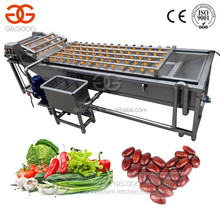Commercial Stainless Steel 304 Industrial Fruit Ozone Water Bubble Leafy Vegetable Washing Machine