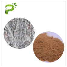 Hot sale pure natural plant source willow extract