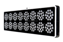 12 band Full spectrum 600w LED Grow Light lamps for Hydroponic Garden and Greenhouse Use