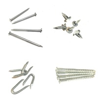 High quality professional manufacturer all kinds of nails