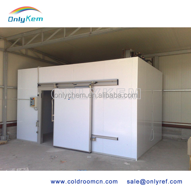cold and freezer room for slaughterhouse/freezing chamber for frozen meat storage