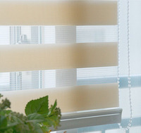 2015 zebra fabric block and filter sunshine double roller blind
