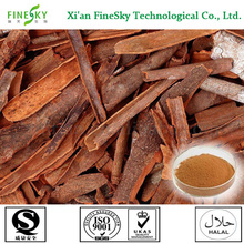 Top Quality Product Specification Cinnamon Powder