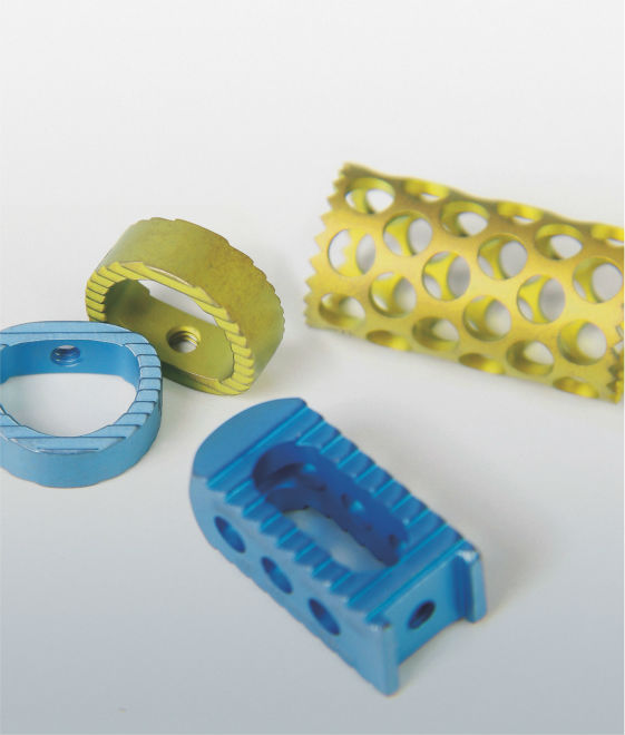 BIOSPINE - CERVICAL CAGES, ORTHOPEDIC IMPLANTS