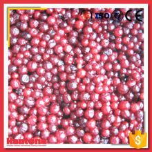 Freezing Lingonberry Whole Frozen Fresh Red Lingonberry