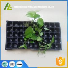 custom plastic vegetable blister propagation seed tray for agriculture