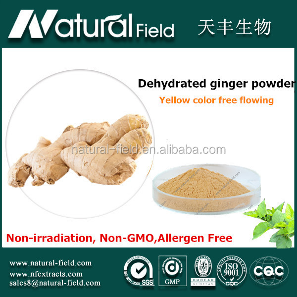 Strictly testing before shipping organic dried ginger powder
