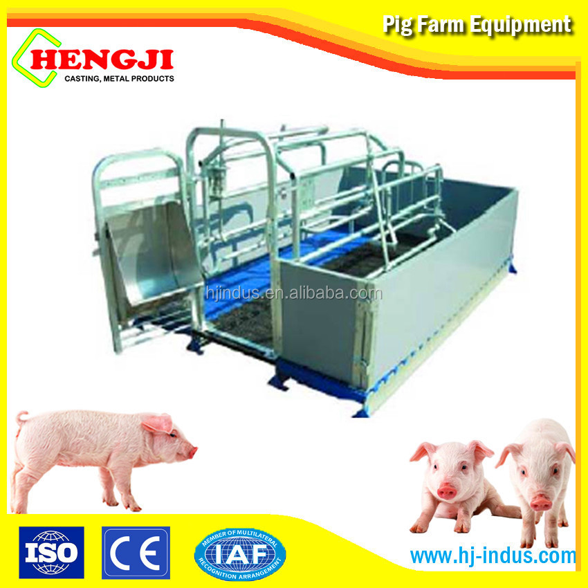China leading sow farrowing crate pigs for sale