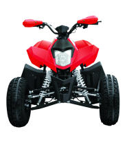 110cc NEW ATV(FXATV-003A-110FZ)
