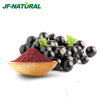 2017 chinese wholesale pure natural food grade Black Currant Powder