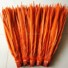 Wholesale 55-60cm Bleached and Dyed Orange Ringneck Pheasant Tail Feathers for Carnival Decoration