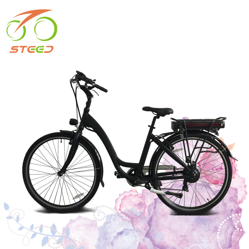 Daily used most eco e tour two wheel electric bike for commute