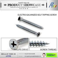 Flat head Pan head electro galvanized Self tapping screws supplier