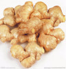 New crop of air dry ginger in bulk in China , professional suppliers, exporter