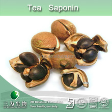 50% 90% 95% tea saponin( theasaponin),camellia sinensis extract