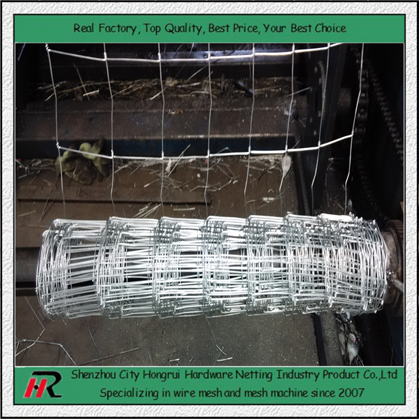 Best price galvanized or PEE coated portable yard cattle fence on sale