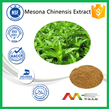 ISO&GMP manufacture supply jelly grass mesona chinensis powder