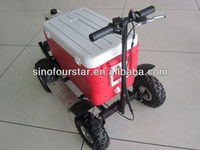cheap 50cc gas cooler scooter for sale SX-G110