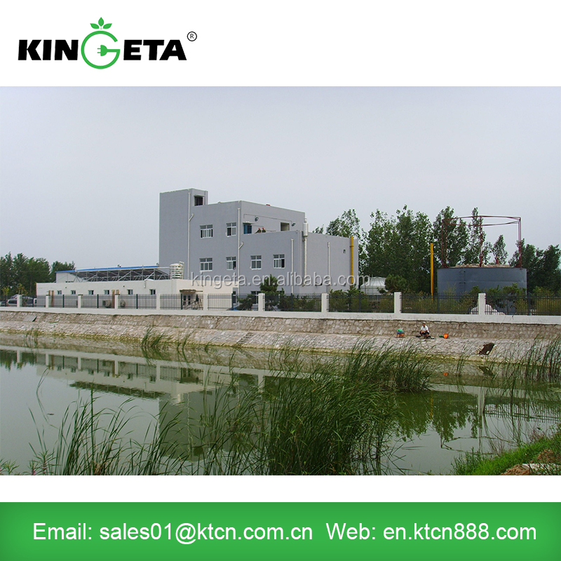 China Kingeta EPC Contractor Customized Biomass Power Plant Project Based on Local Resource