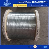 Galvanized Wire/Galvanized Iron Wire/Galvanized Steel Wire Factory