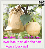 custom kraft paper fruit growing bag/kraft paper fruit protection bag