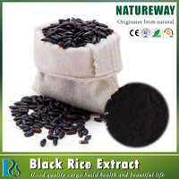5%~25% Anthocyanin and 95% Proanthocyanidins high quality pure black rice extract