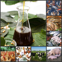 soy lecithin for Mineral supplements Animal feed additives