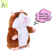 great talking hamster pakistan mimicry pet for kids