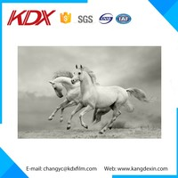 2016 New Stereograph Vividly Transparent Horse 3D Picture