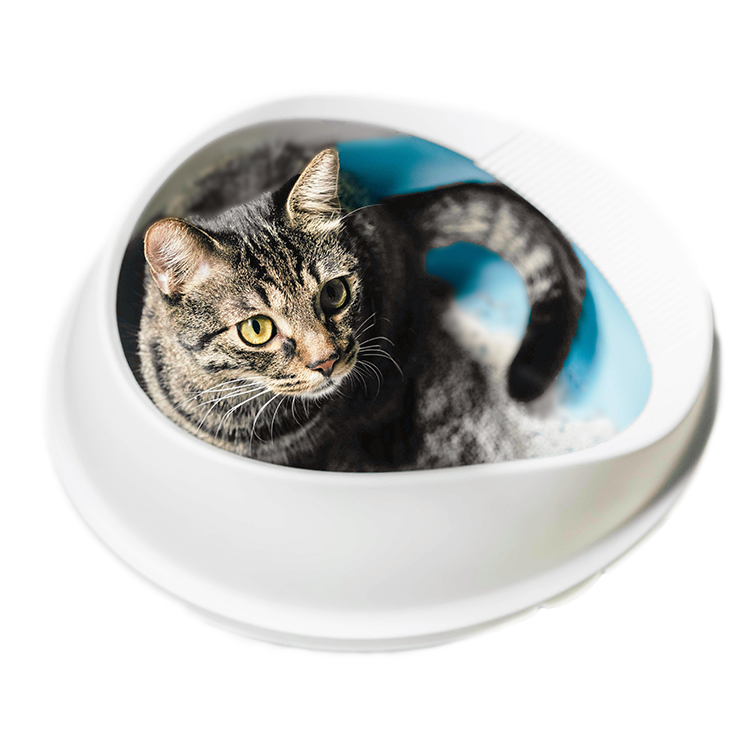 New products durable pet litter tray plastic cat litter box with waste scoop