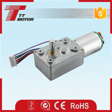 12v small dc worm gear motor with encoder