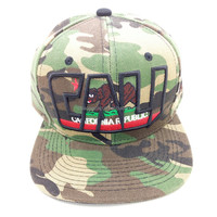 HIgh quality 6panel customize snapback hats