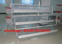 A type egg layers cage design chicken cages for laying hens MJ chicken cage