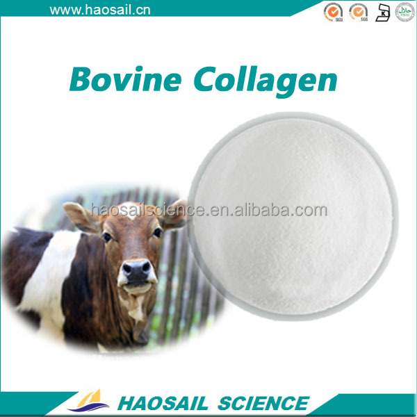 PREMIUM QUALITY HYDROLYZED COSMETIC USE BOVINE COLLAGEN POWDER