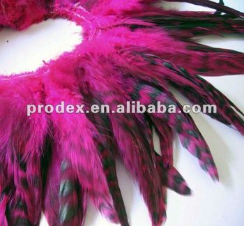 fuchsia stripped chinchilla feather trim