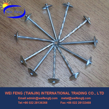 top 10 seller umbrella head roofing nails factory in China