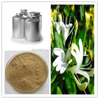 Natural flower extract powder flos lonicerae extract,Chlorogenic acid