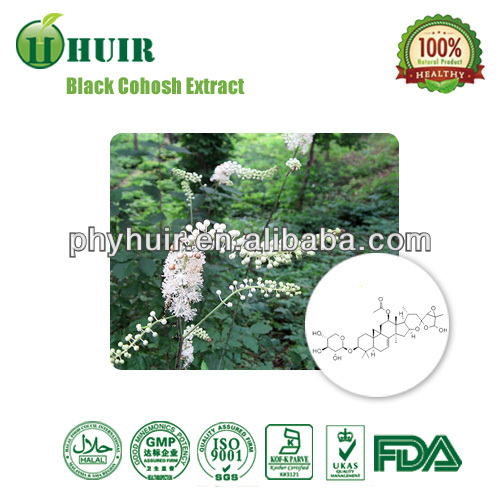 Pure natural high quality low price Black Cohosh P.E