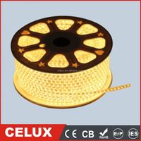 SMD3528 60LED Back Light LED Rope Grow Strip Light Good Price High Brightness