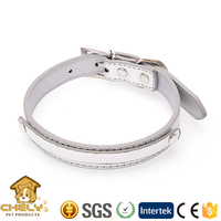 Silver Dog Leather Collar For Big Dogs XXS to L Size