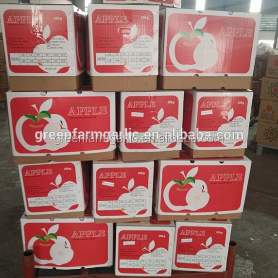 Pome Fruit Red Color red star apple